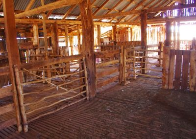 Station Shearing Shed