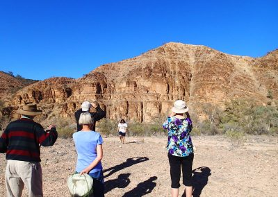 Tours to Arkaroola