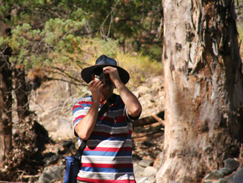 Birdwatching and bushwalking at Arkaroola