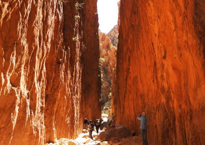 Tours to the Western MacDonnell Ranges