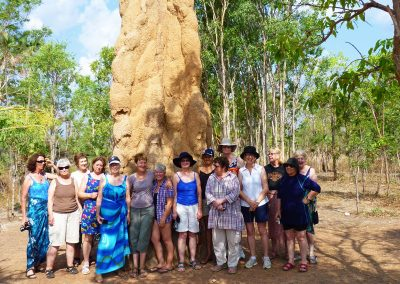 Termite Mounds in NT