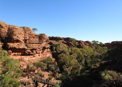 Outback Tours to Kings Canyon