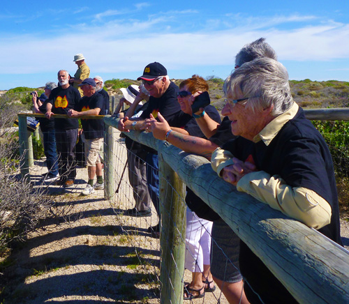 Eyre Peninsula Tours in small groups