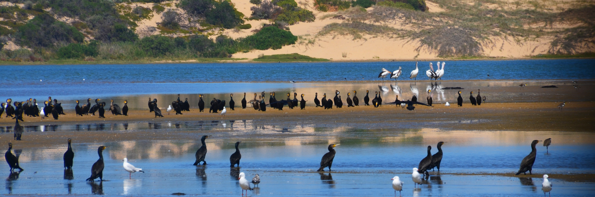 Australian Iconic Tours Group Tours And Charters In Australia - Australian tours