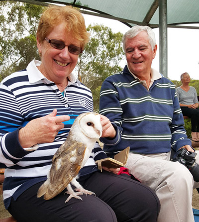 Birds of Prey Show on Kangaroo Island