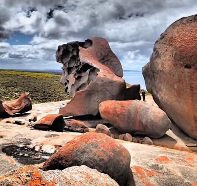 Kangaroo Island Tours