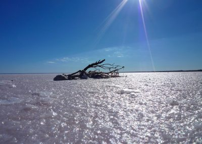 Salt Lake South Australia