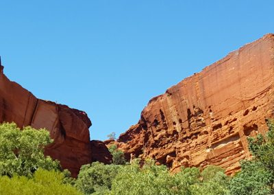 Kings Canyon Cliffs